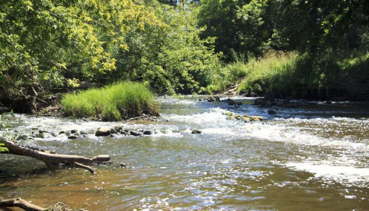 Rzeka Mienia