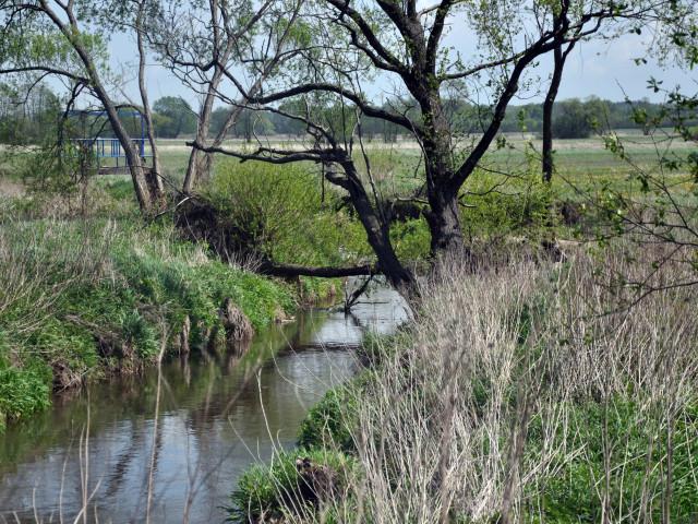 Kąck, Rzeka Mienia, Gmina Wiązowna