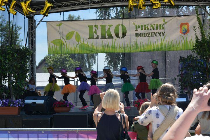 IV Eko Piknik w Zakręcie