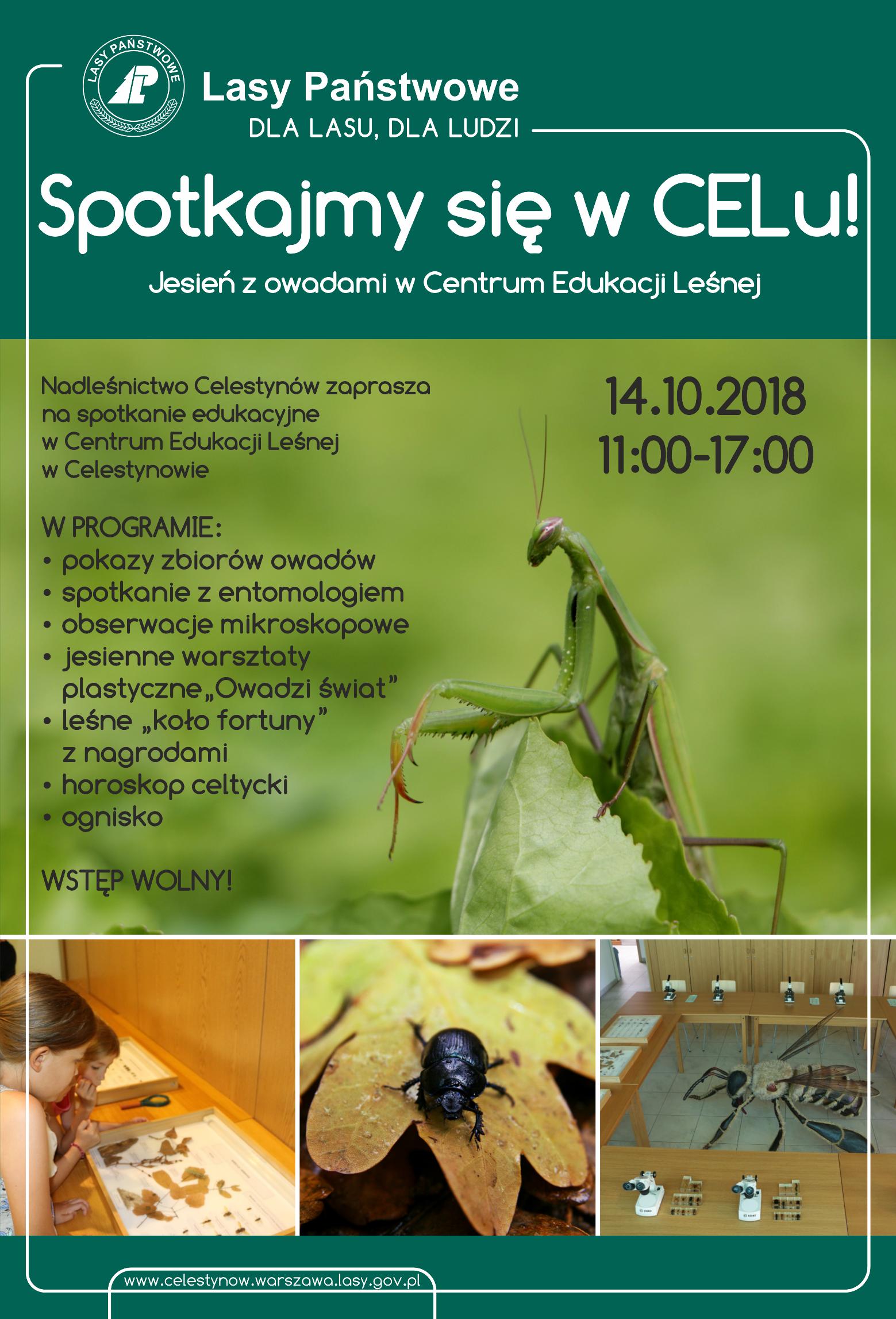 plakat jesień z owadami w CEL