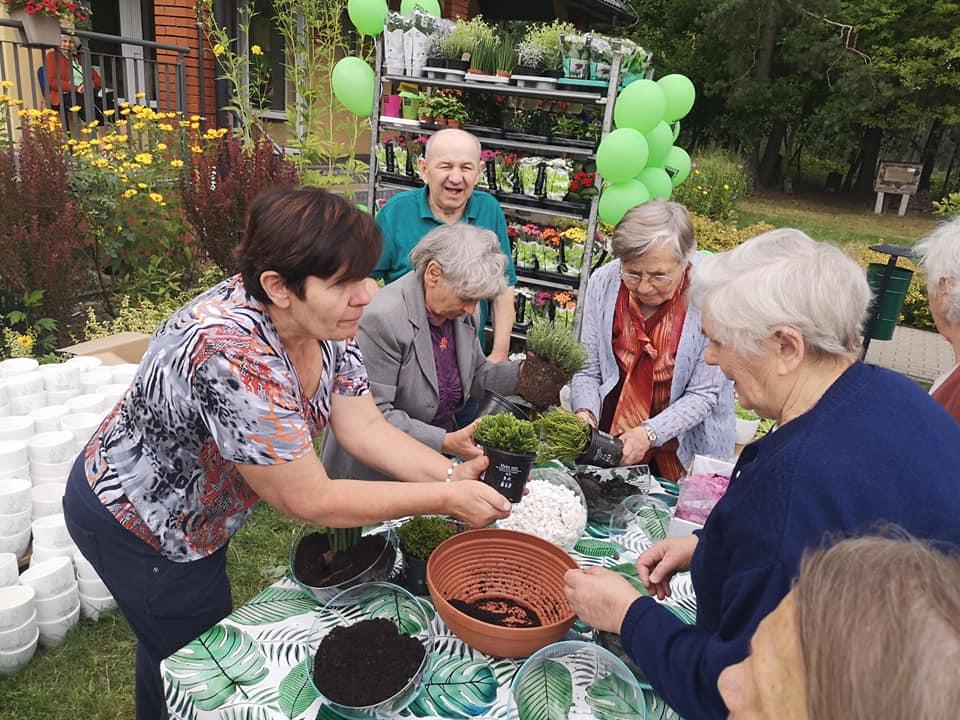 Seniorzy tworzą małe ogrodki w doniczkach
