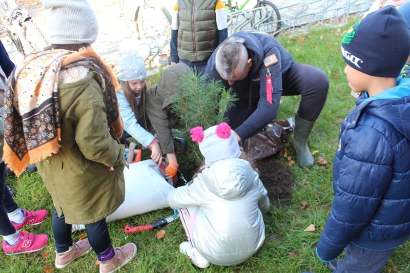 Dzieci ze szkoły w Zakręcie posadziły drzewa z okazji Światowego Dnia Drzewa