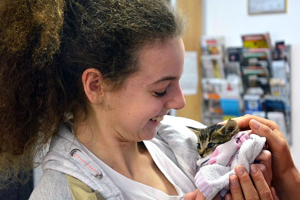 Dziewczyna z kręconymi włosami. Dziewczyna trzyma w rękach małe kotka