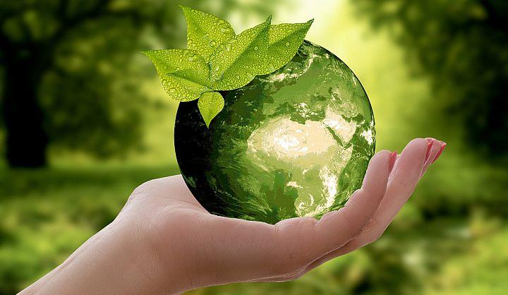 Rozwarta dłoń, która trzyma zieloną kulę ziemską