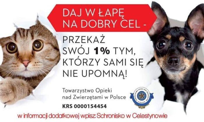 Plakat z informacją o tym, że można przekazać 1 procent podatku na Schronisko w Celstynowie