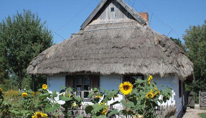 Biała chata kryta strzechą. Przed nią ogrodzenie i żółte słoneczniki