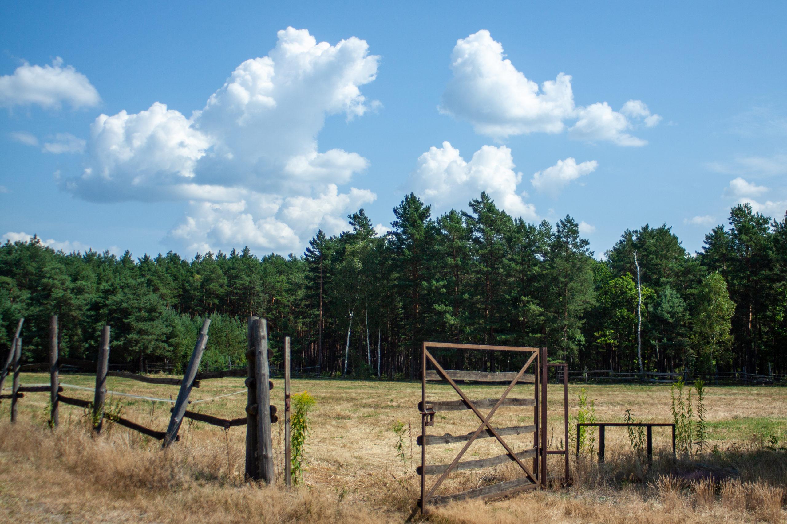 """Zrzutowisko """"Pierzyna"""" w Malcanowie. Ogrodzony teren zrzutowiska. w Tle las i niebo z białym chmurami"""