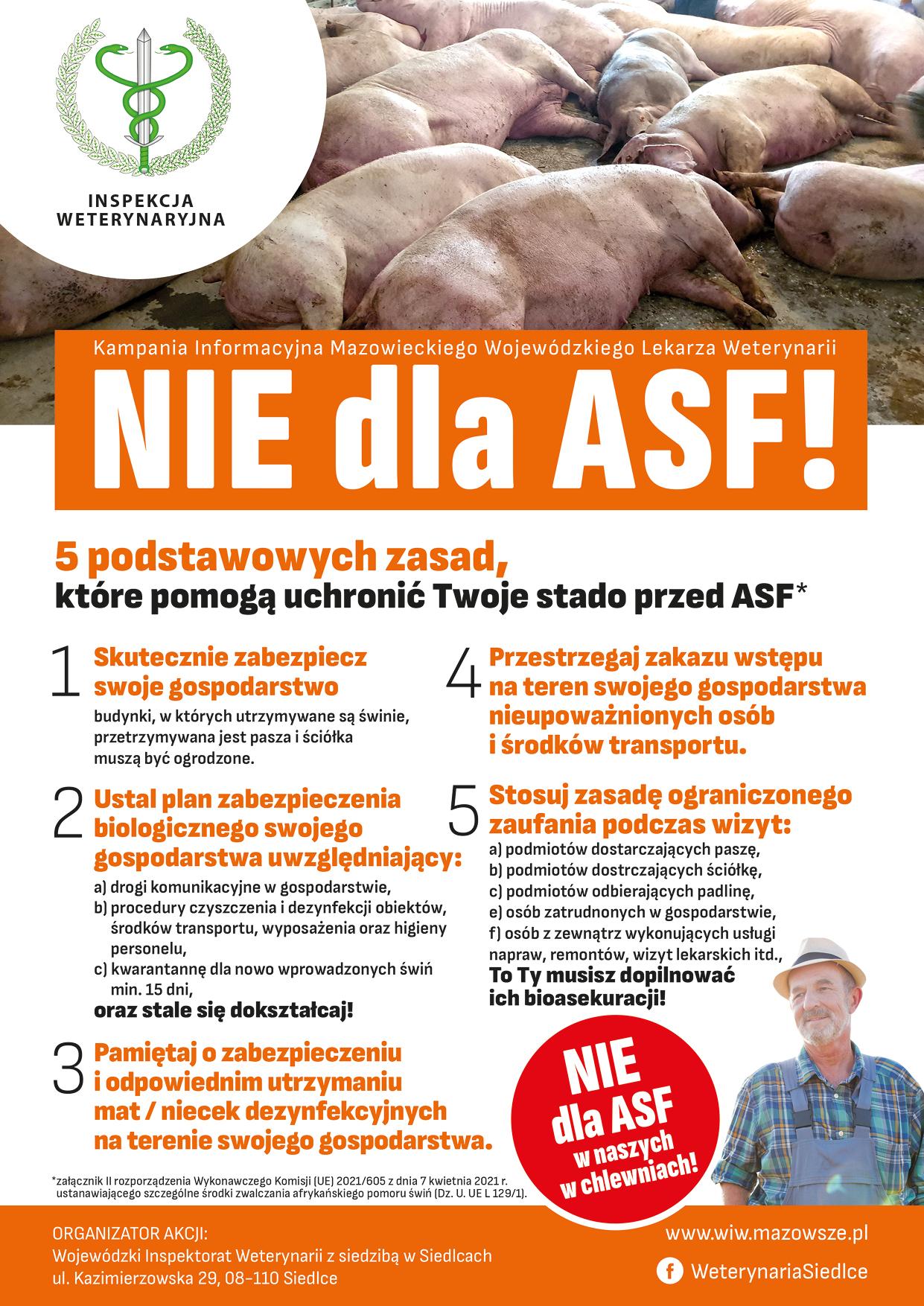 Plakat informacyjny o ASF